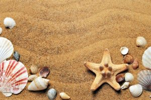 חול בים