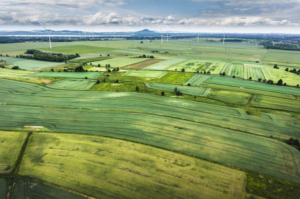 שדות חקלאיות